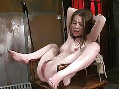 free bdsm porn clips